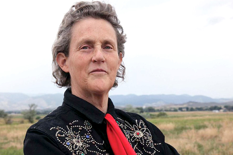 A photo of Dr. Temple Grandin